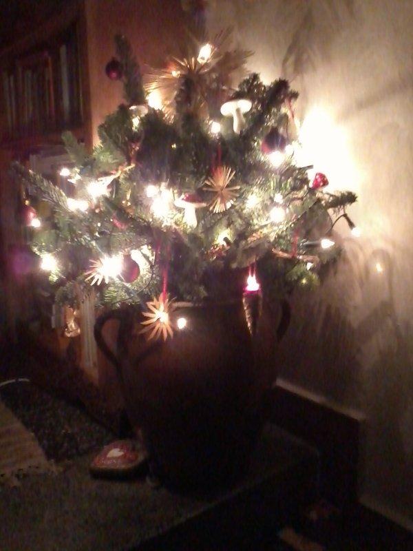 Weihnachtstopf im Jakobgut.jpg
